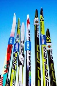En vakker bukket med ski. Men skipark? Serr?