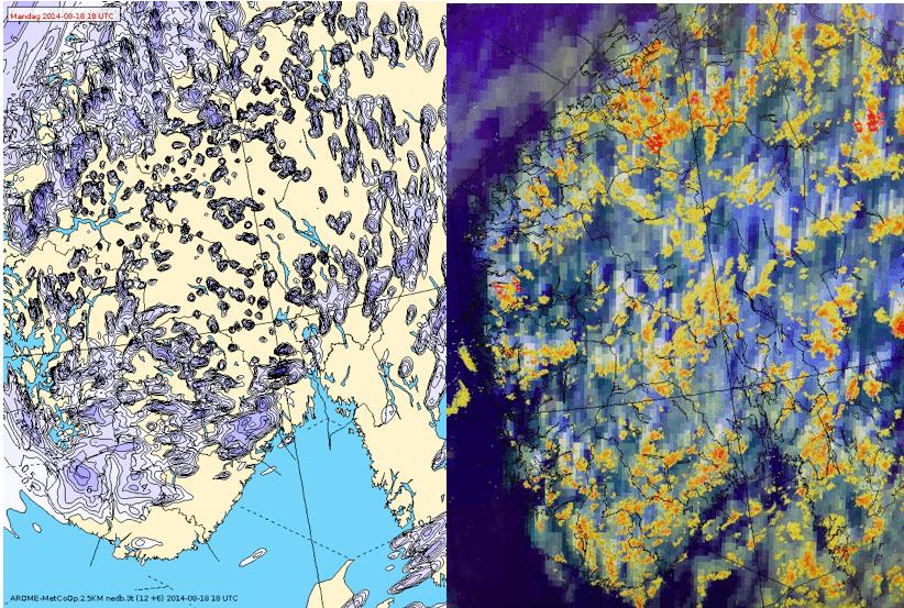 ill: beregnet og observert nedbør for én time. NRK/YR.