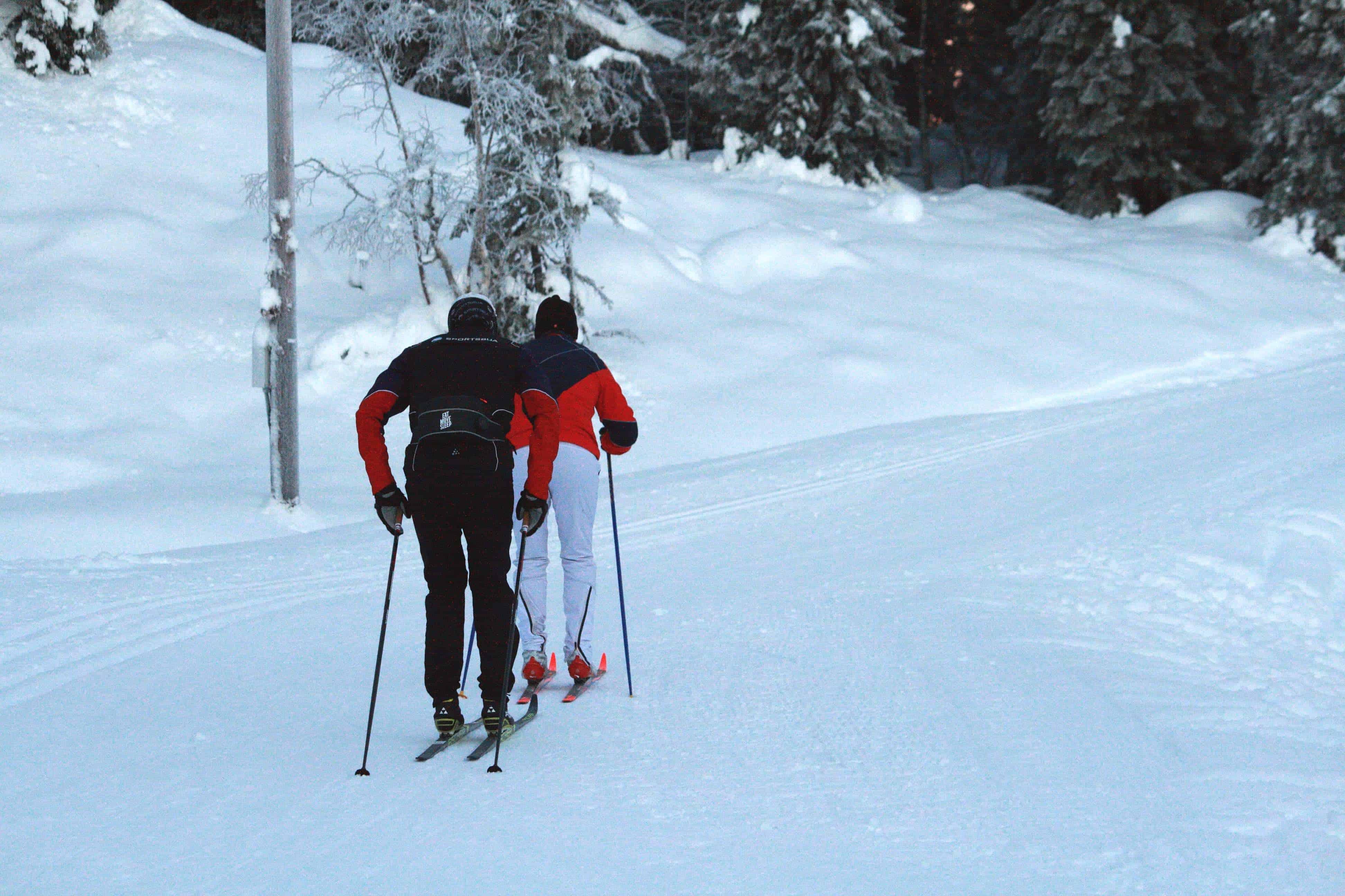 pro ski c2 test