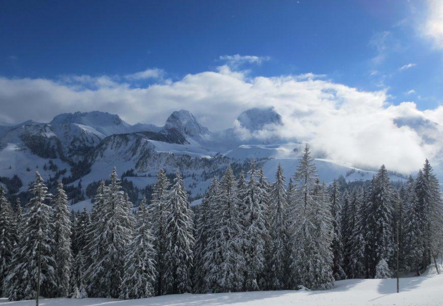 Enjoy 250 km of guided winter Switzerland next season (1.-8. february 2020)
